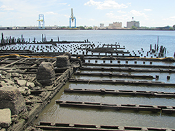 old ppilings at the end of the Washington Avenue Pier